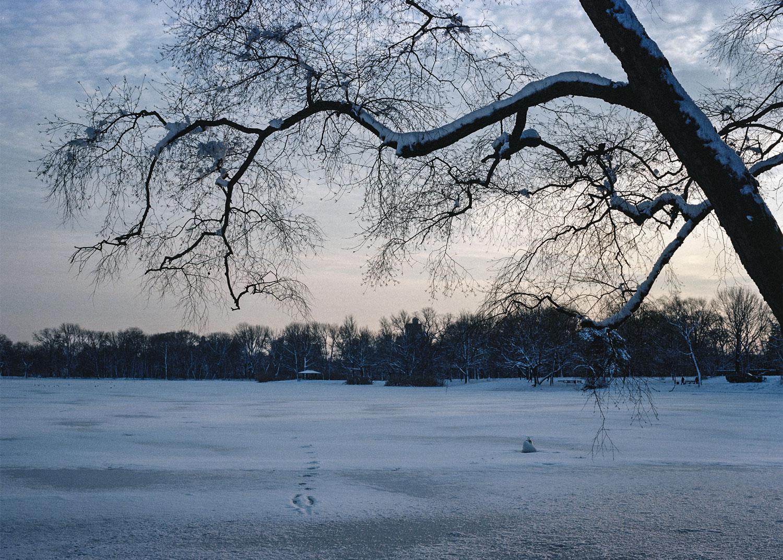 2014_he_winter_4_9-5x7.jpg