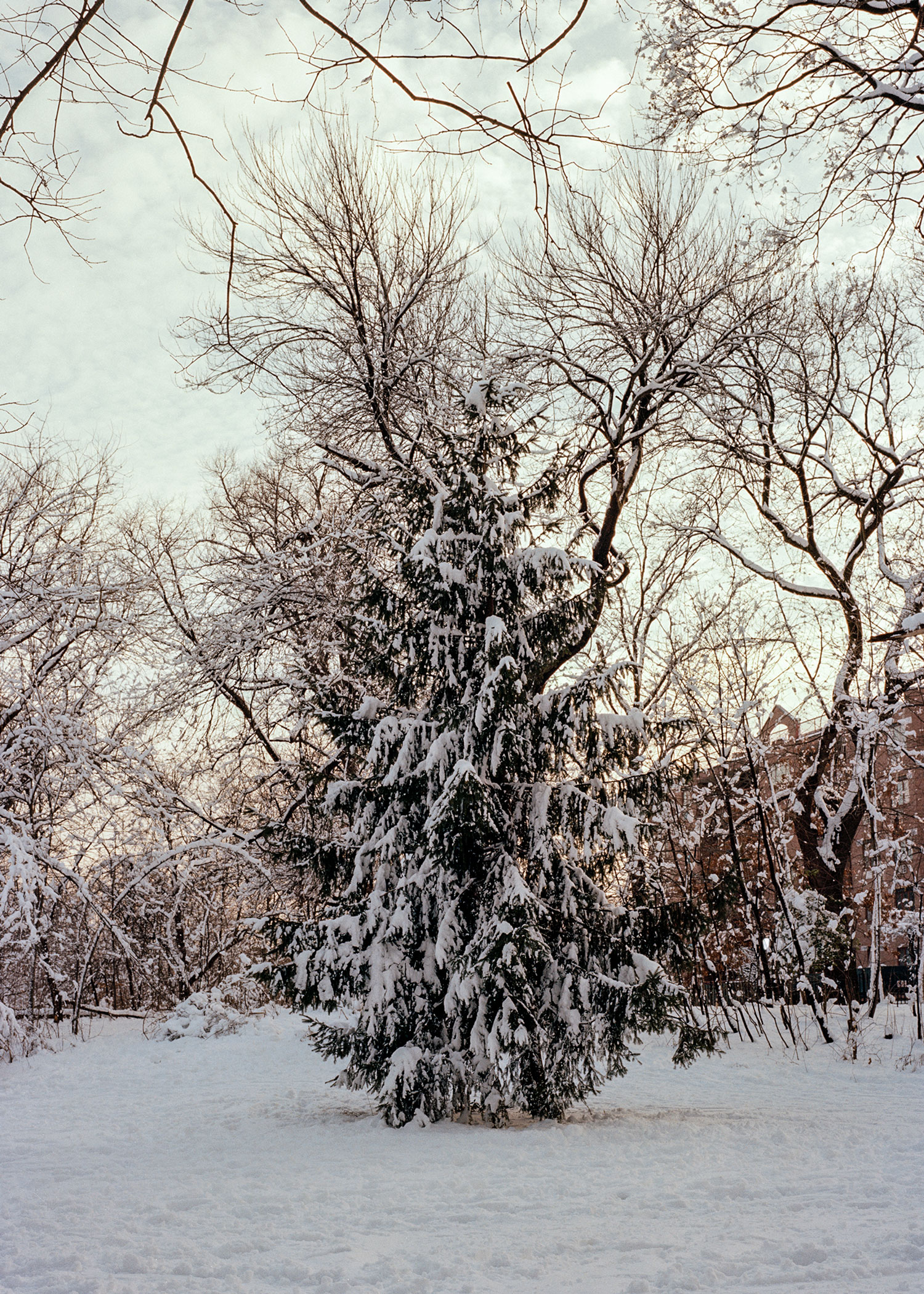 2014_he_winter_3_1-5x7.jpg