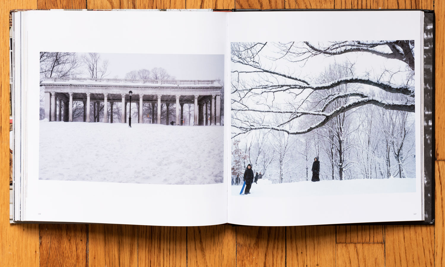 The Peristyle after the Blizzard  (left). Page 196. © harlan erskine 2018.  Irina Rozovsky , Untitled, from the series In Plain Air, Prospect Park, Brooklyn 2011-2016 (right). Page 197.