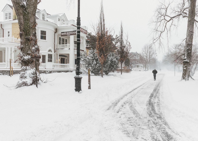 'Blizzard Walking Albemarle Road, Brooklyn,' © 2018 harlan erskine