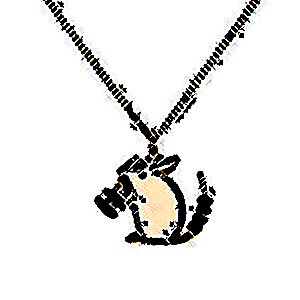 Chanel necklace,  USD$245