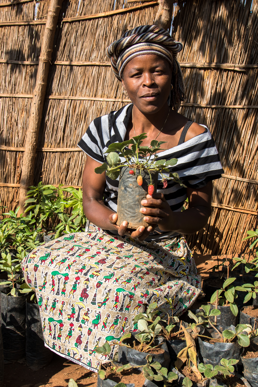 Adam Dickens Photography 2015 - GROW Malawi - Jean Ndalo 1346.jpg