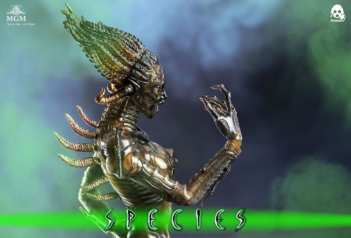 Species_6347.jpg