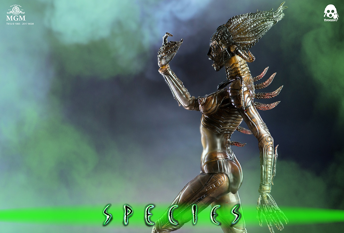 Species_6360.jpg