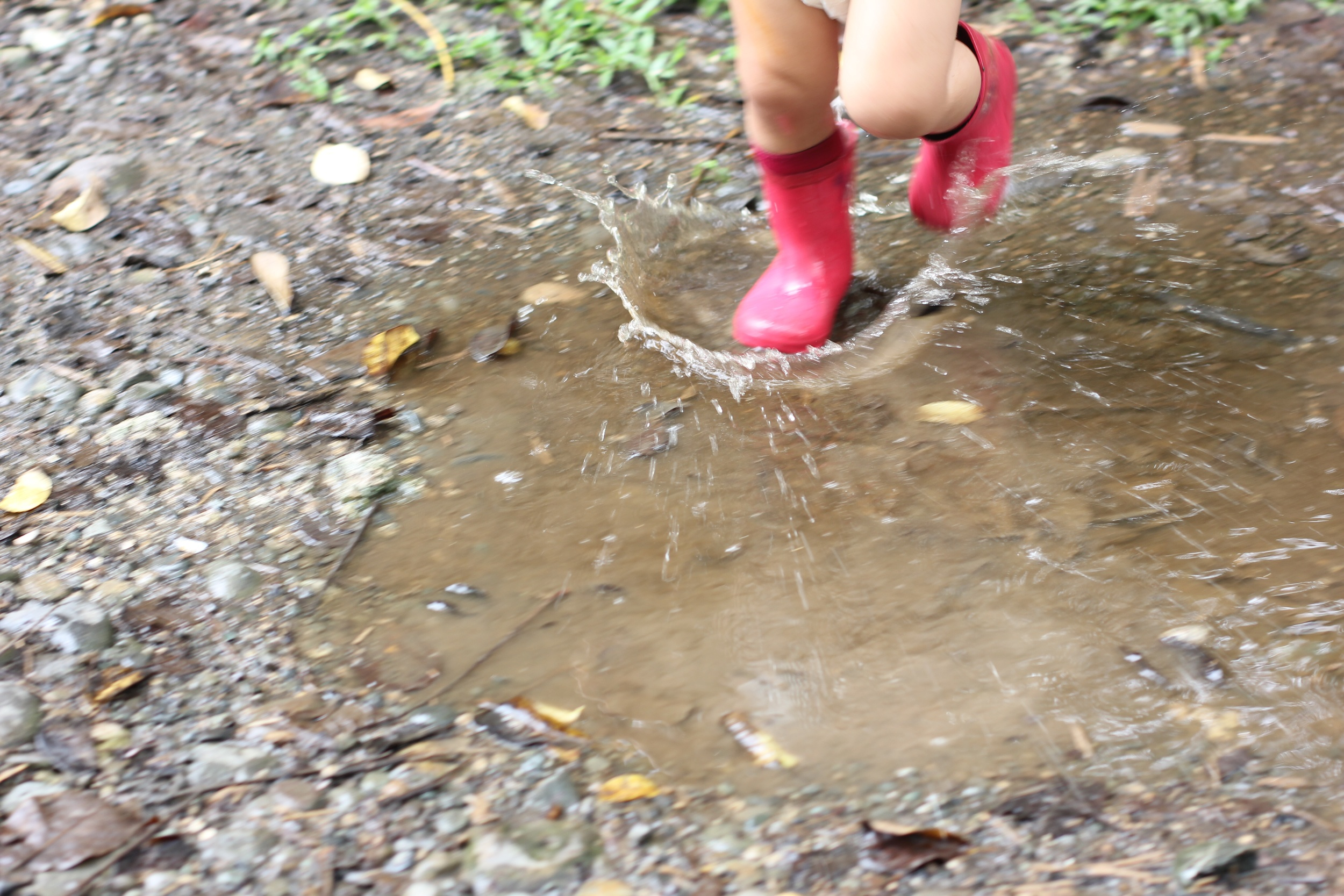 puddle conquered (c) dhana loner