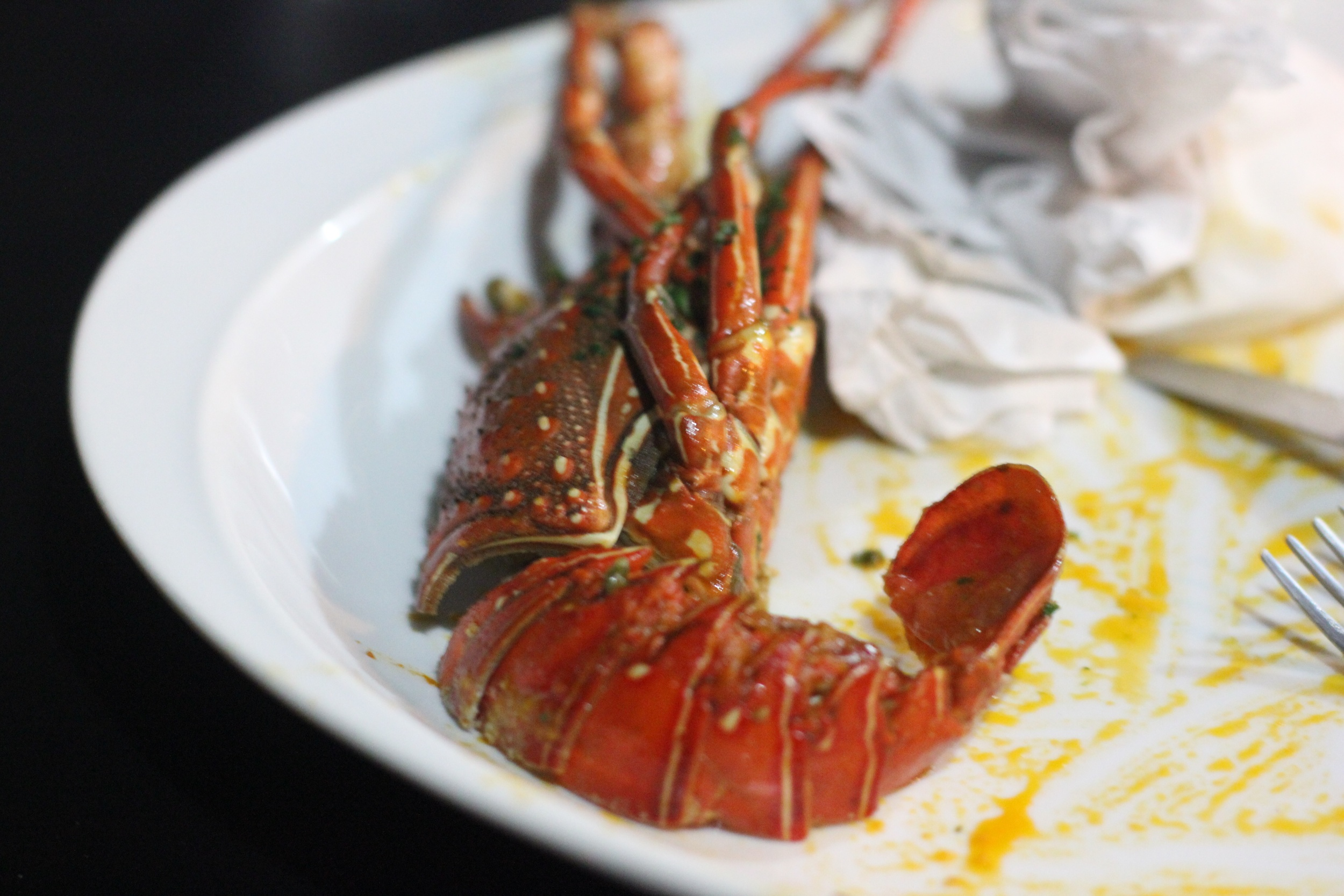 tagliatelle con lobster - something I can image in to have everyday