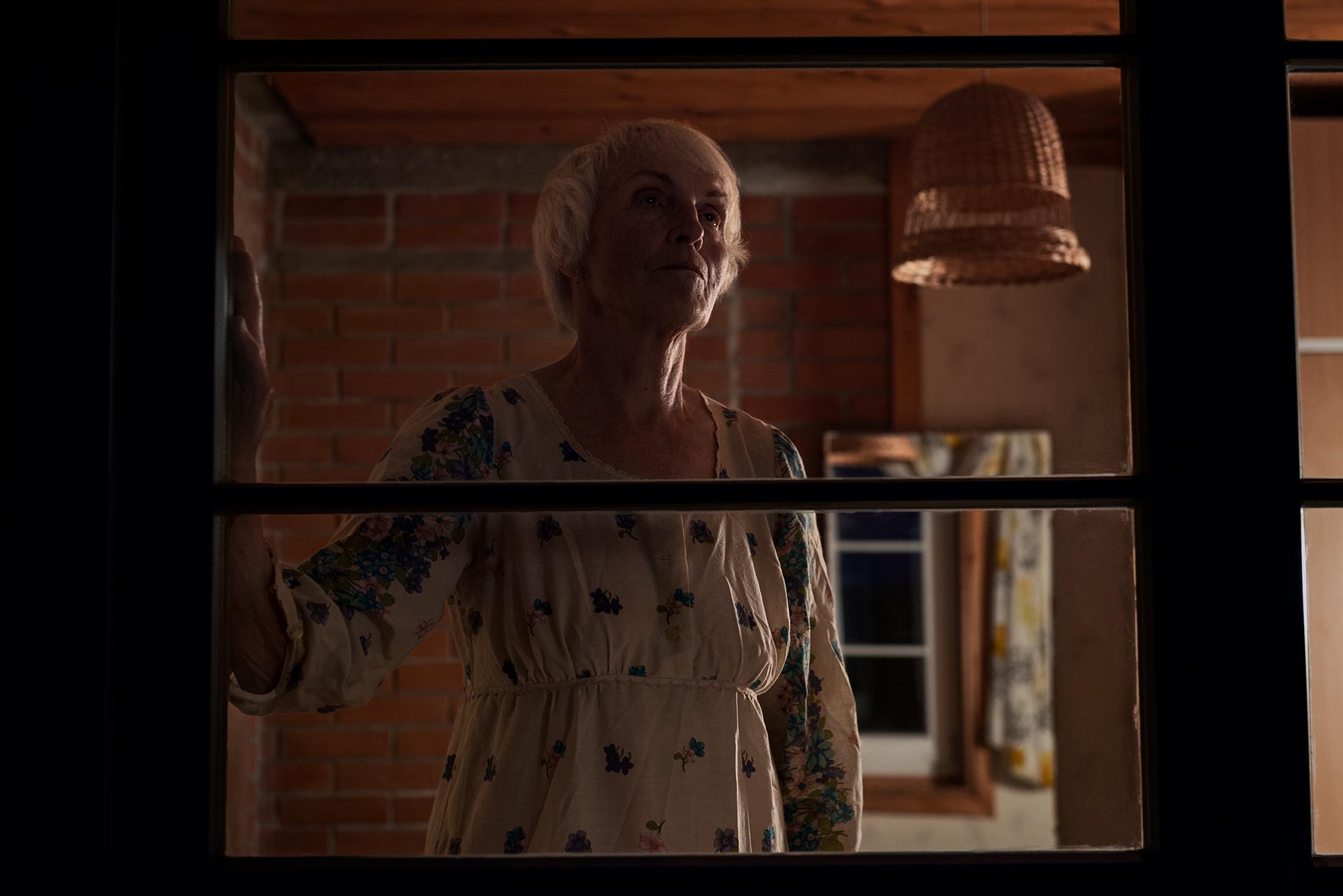 Grandma at the Window