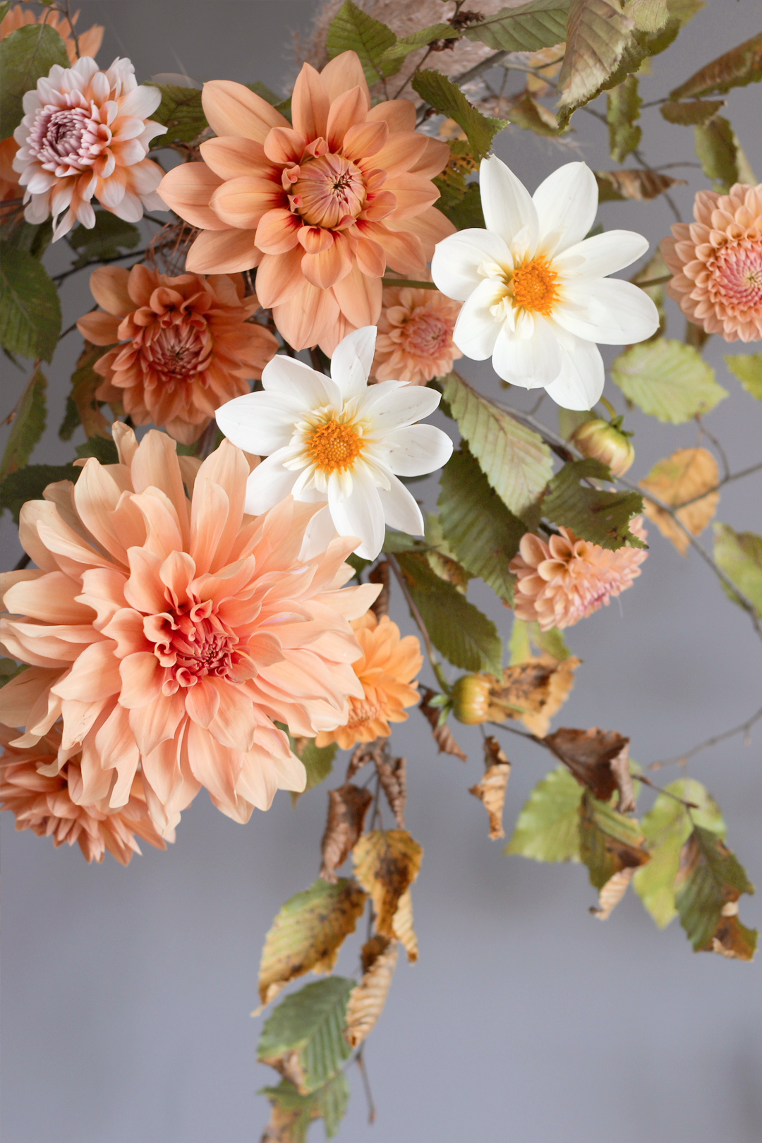 hanging-floral-arrangement-dahlia-autuman-fall-nancy-straughan.jpg