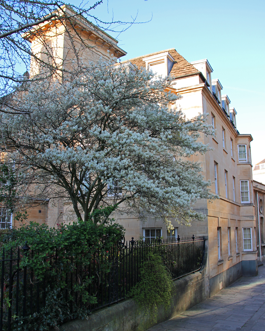 bath-mini-break-holiday-things-to-do-blossom.jpg