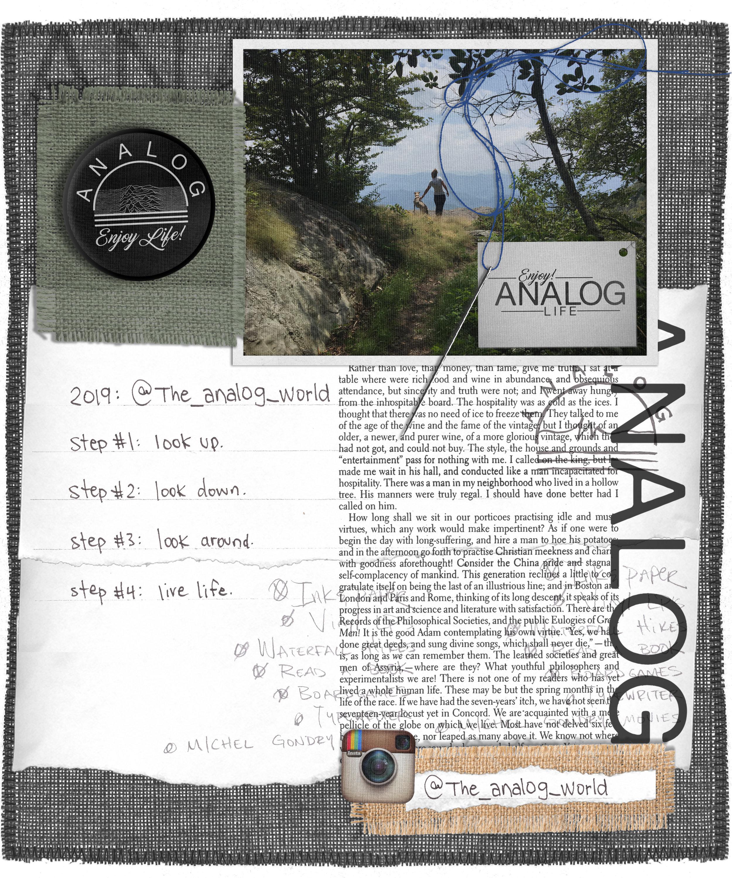 1B-ANALOG TOP.jpg