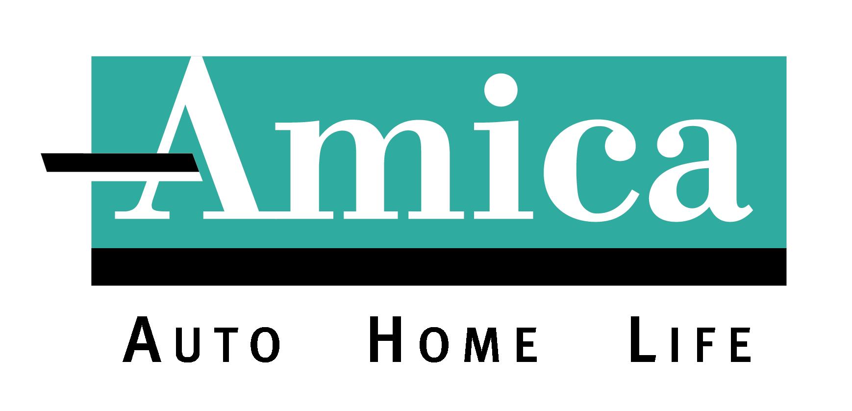 Color Amica Logo black AHL_2C copy.jpg