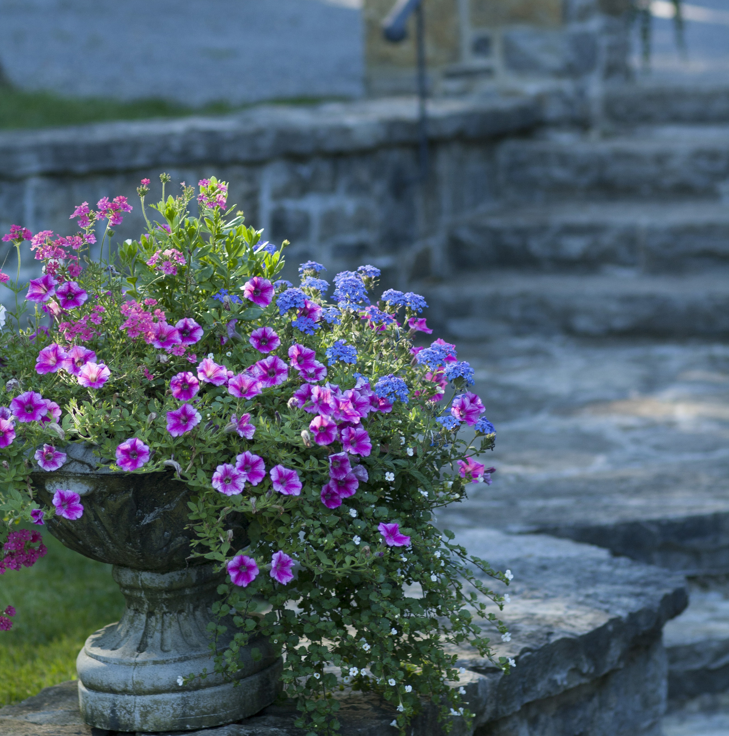New Home With A Heritage Feel | Planter | Landscape Architecture | Riverview Design Solutions | Prescott, Ontario, Canada