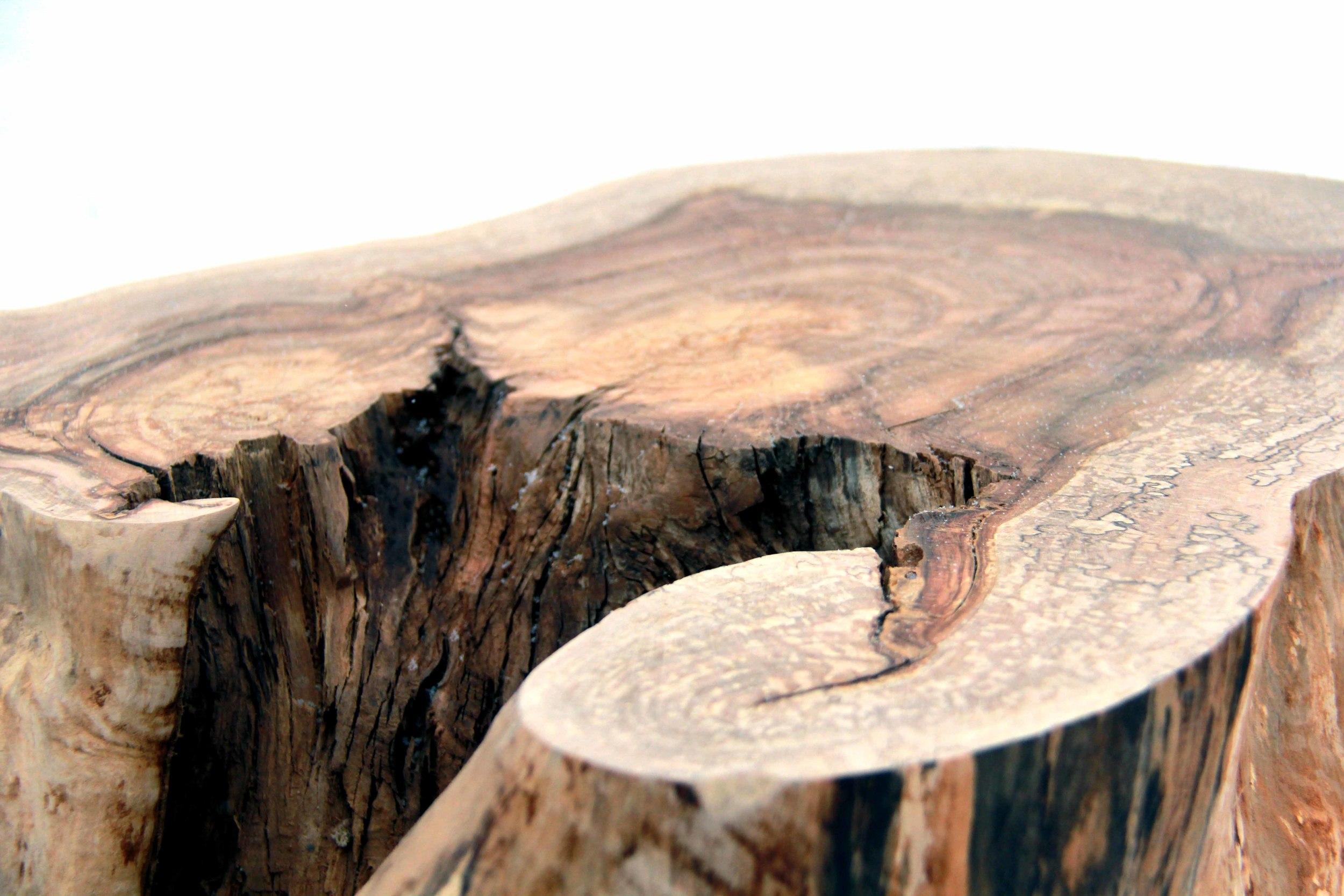 Riverview Design Solutions - Woodland Table - Furniture - Landscape.jpg