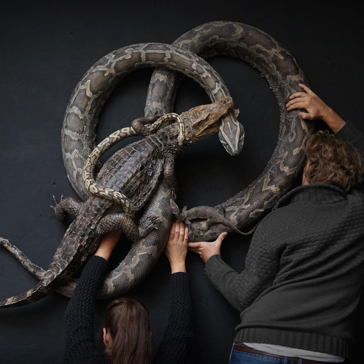 Snakes-Commission-2.jpg