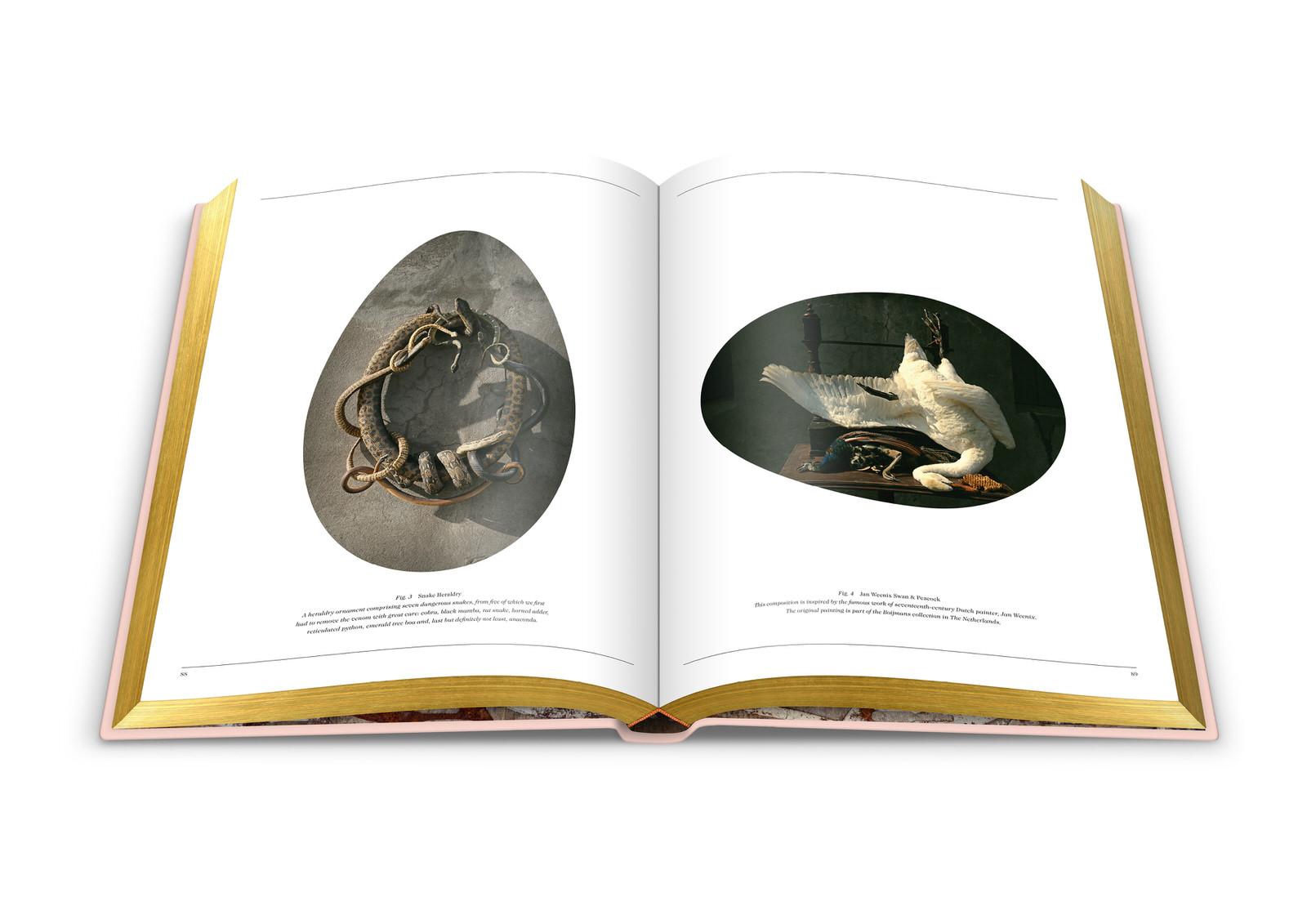 008-DSvT-Our-First-Book-Spread-First-Show-2.jpg