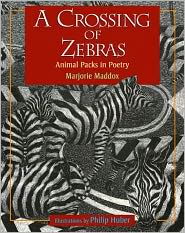 cover image photo of Crossing of Zebras PG.JPG