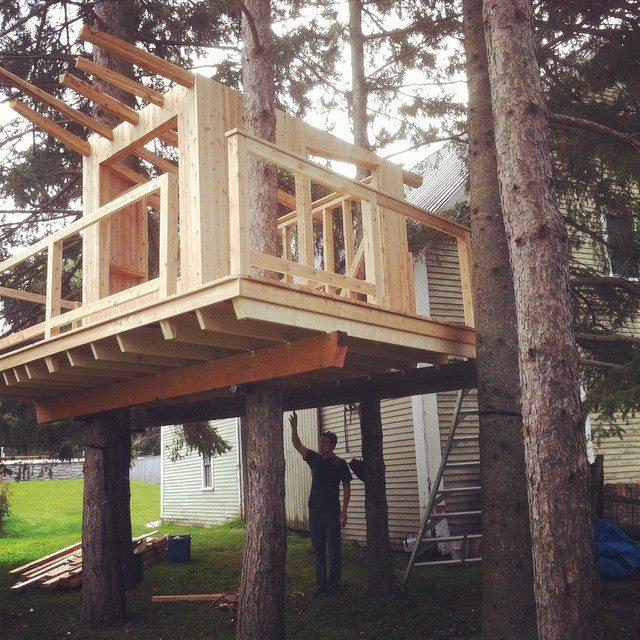 treehouse 11.jpg
