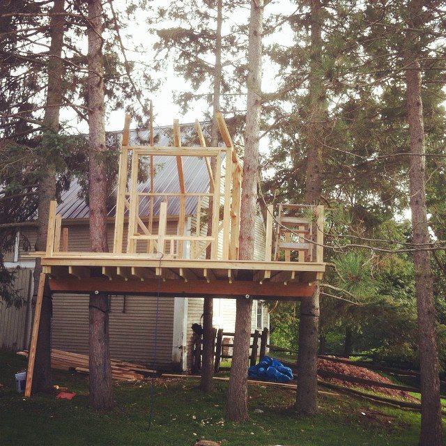 treehouse 12.jpg