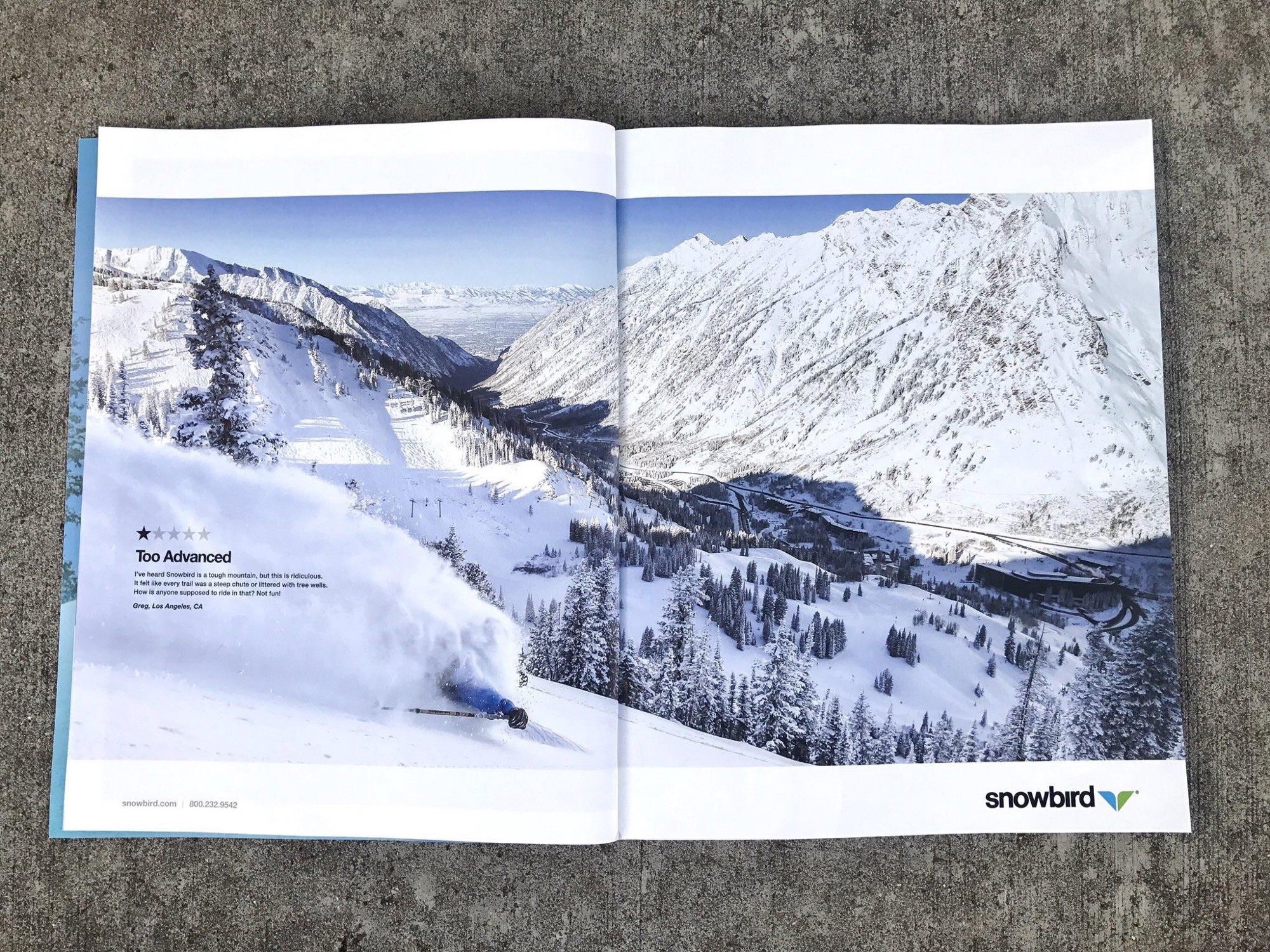 A ski resort used a 1-star review in its (brilliant) ads