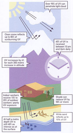 UV light is sneaky and may be getting to your skin and your eyes in situations you might not expect such as underwater, on cloudy days or getting a double dose from light reflected off of snow or water!