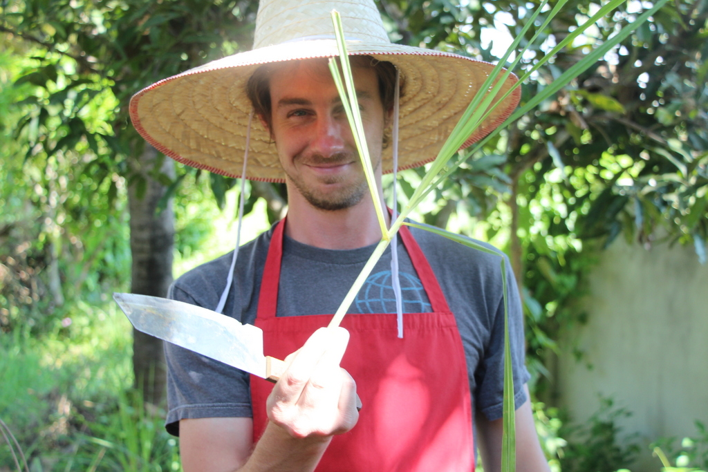 """John harvesting lemongrass. It looks like a large green onion but more yellow in color. However, the stalk is very fiberous and cannot be eaten directly unless finely grated. For soups and curries, the bottom 1/3 of the stalk is chopped into 1"""" pieces that are not eaten. For curry paste, the stalk is finely chopped and then ground with a mortar and pestle."""