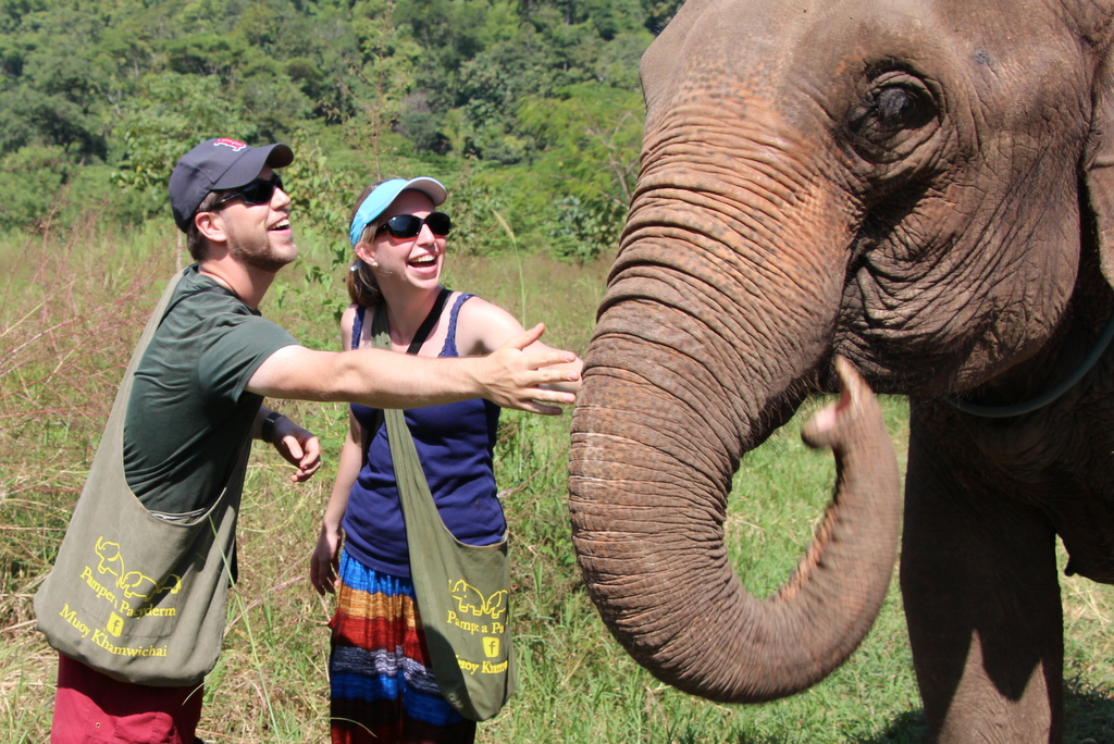 Our day with the elephants in Chiang Mai was the single most fun day of the entire trip