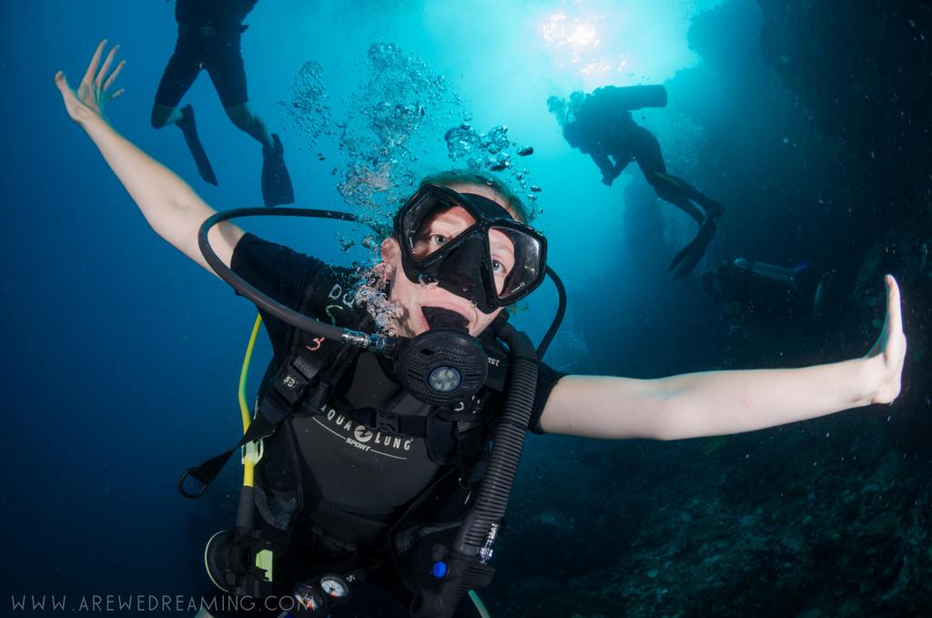 DQ 8 - Nov 2014 - Similan Diving Safaris - AreWeDreaming.com-327.jpg