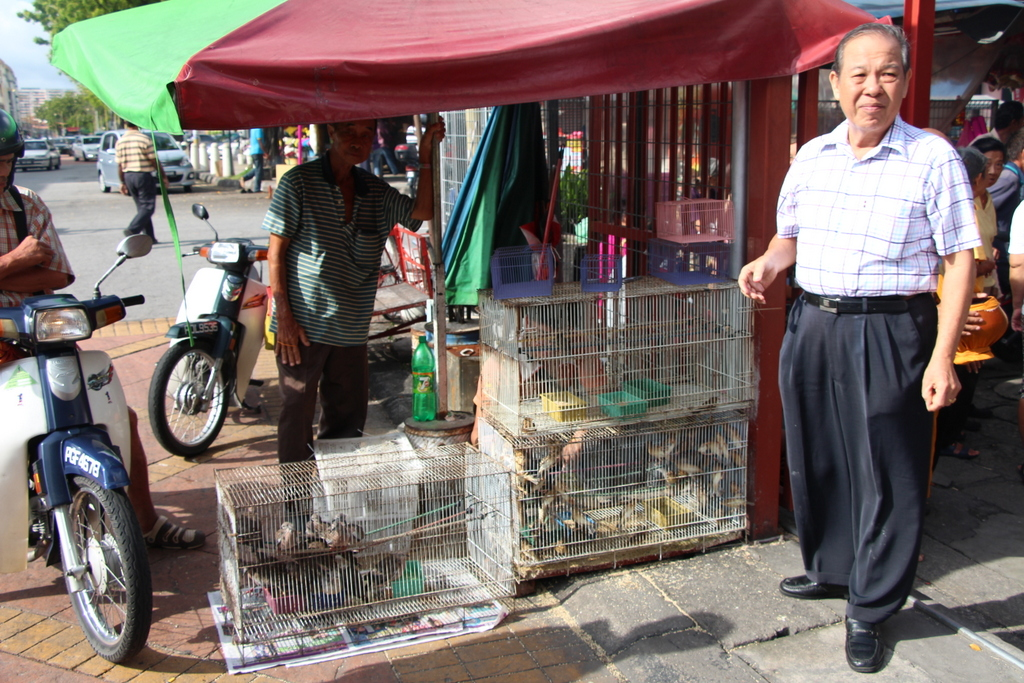 Birds for sale! This vendor takes the birds you purchase and puts them into a smaller cage for releasing.