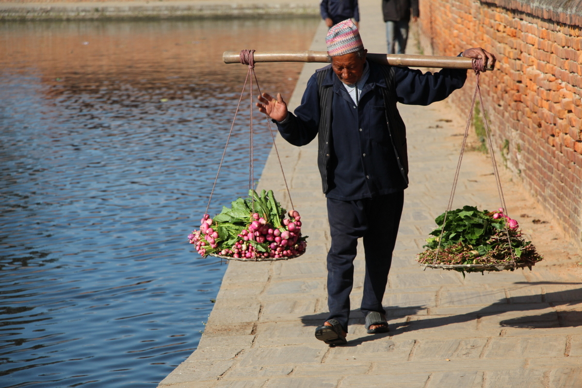 A man carrying vegetables for sale near beside a retaining pond in Bhaktapur