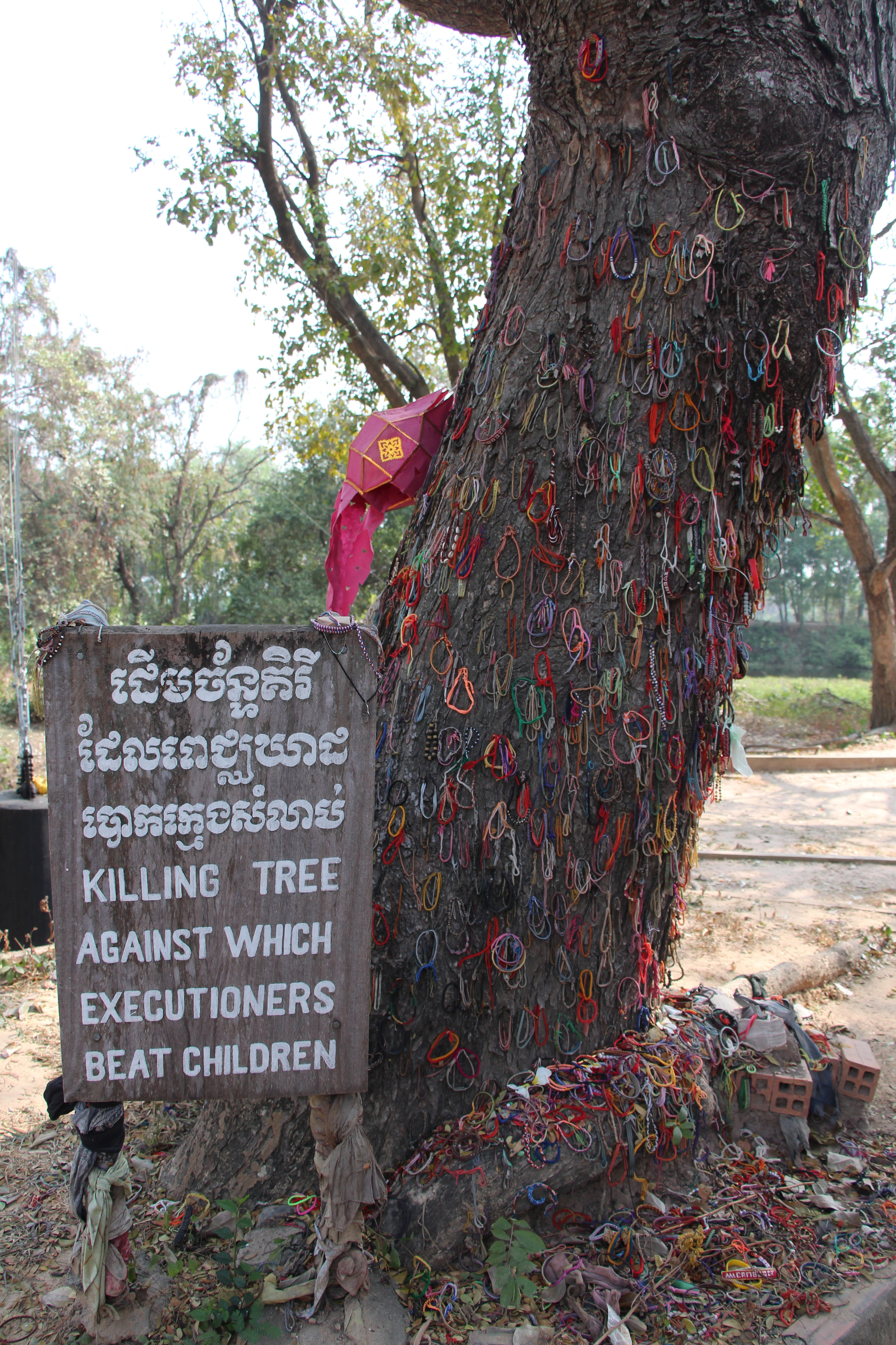 """Labeled the """"killing tree,"""" Khmer Rouge soldiers would literally beat babies heads against the tree, crushing them and killing the children. The bands on the tree and in other photos are left by visitors in remembrance and acknowledgement."""