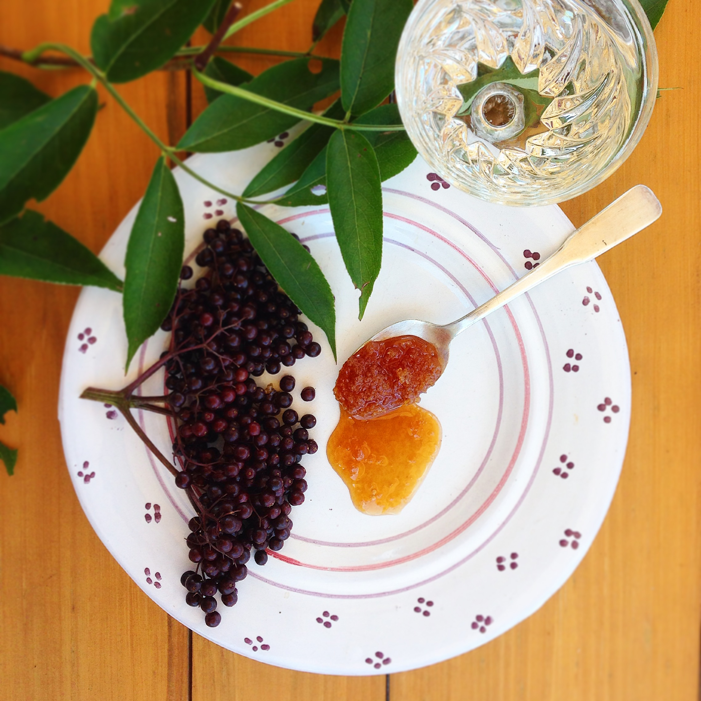 3 simple ingredients to banish the flu and cold forever! fresh elderberries - raw local honey - water