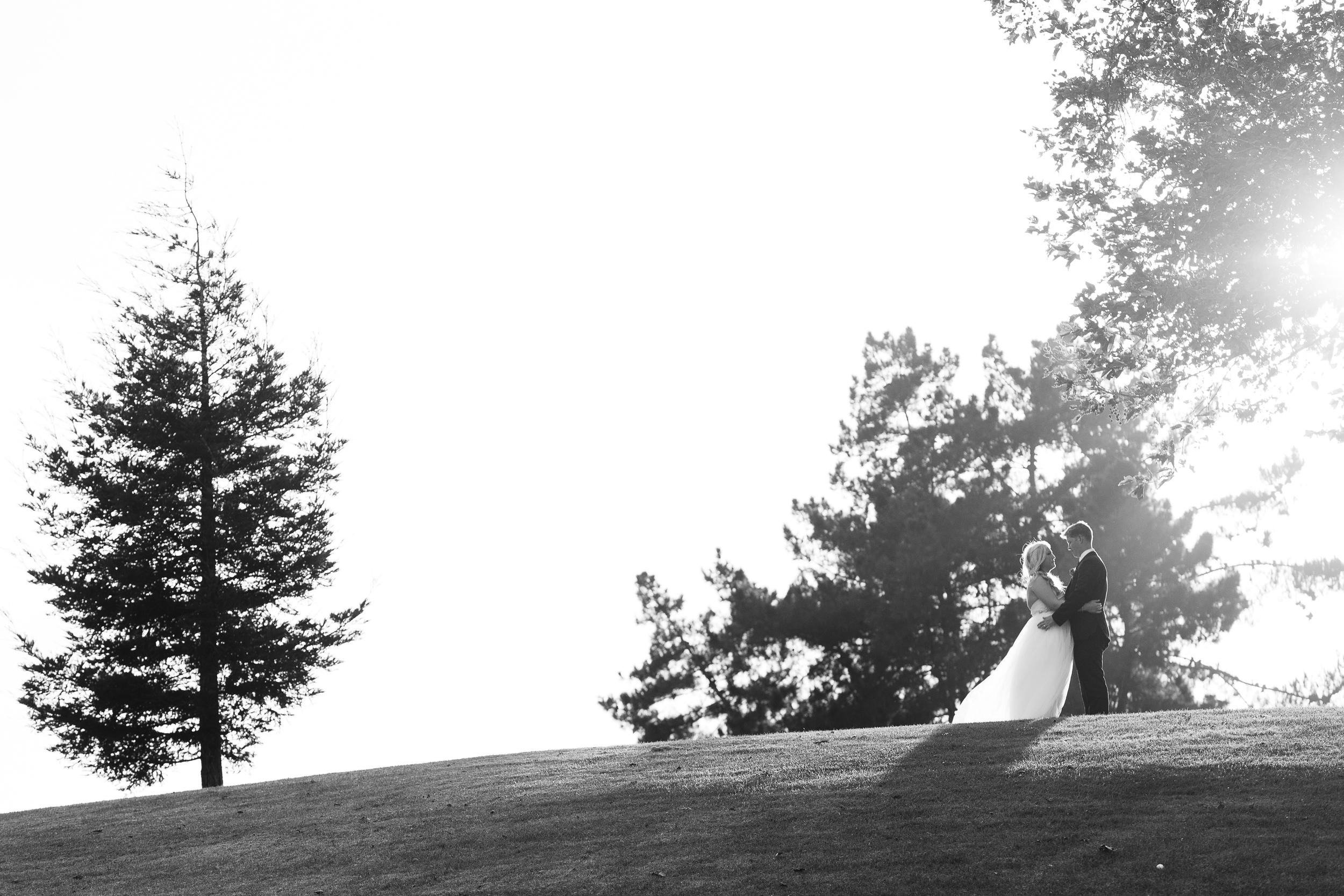 Brittany&ChrisWeddingPhotos-BrianLeahyPhoto-0545.jpg