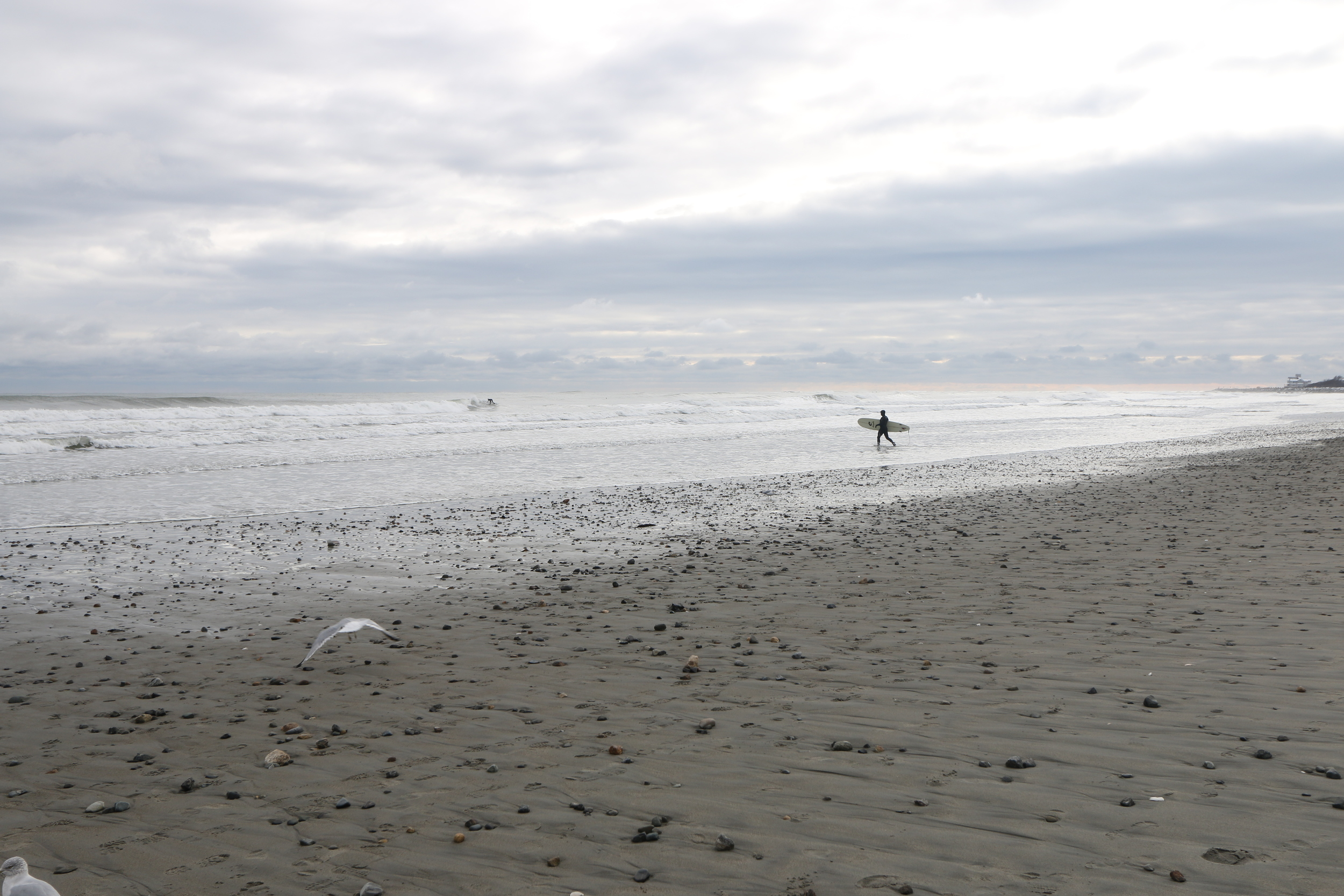 surfer on jenness beach [rye, nh]