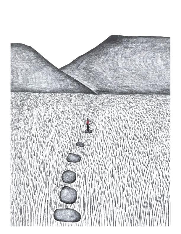 The Field -Illustration by Nadia Ackerman