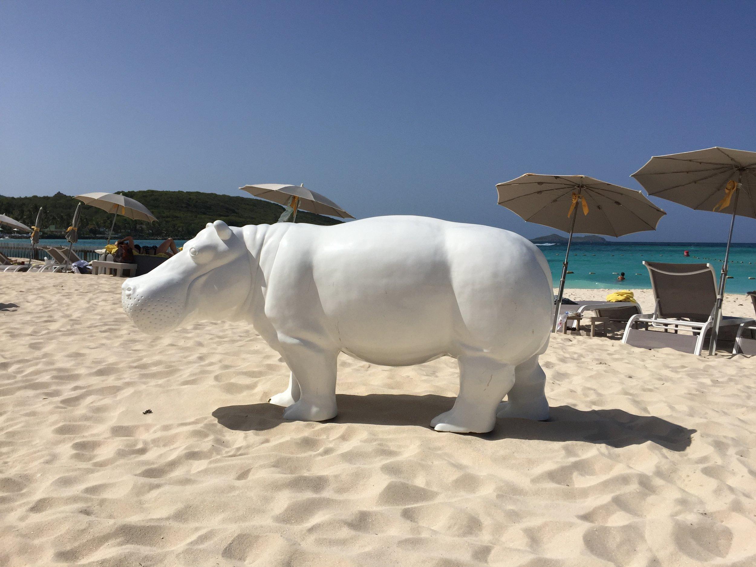 Tom Beach Hotel Hippo by Stephenie Rodriguez