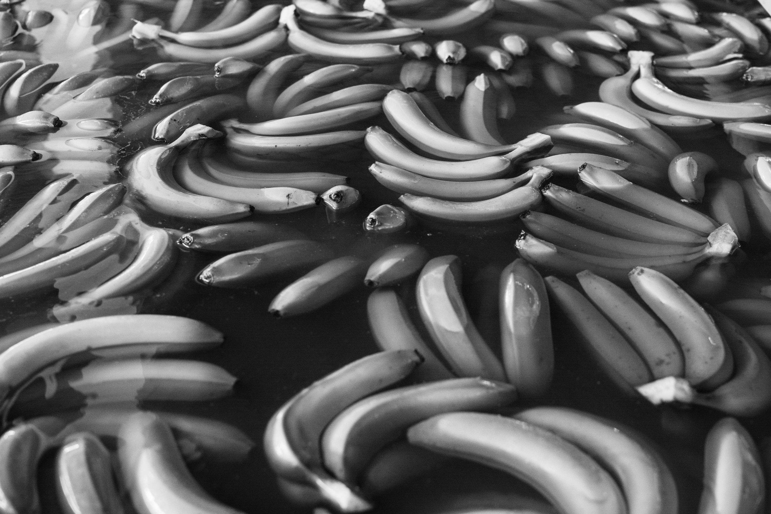30-banana-DSC_9910.jpg