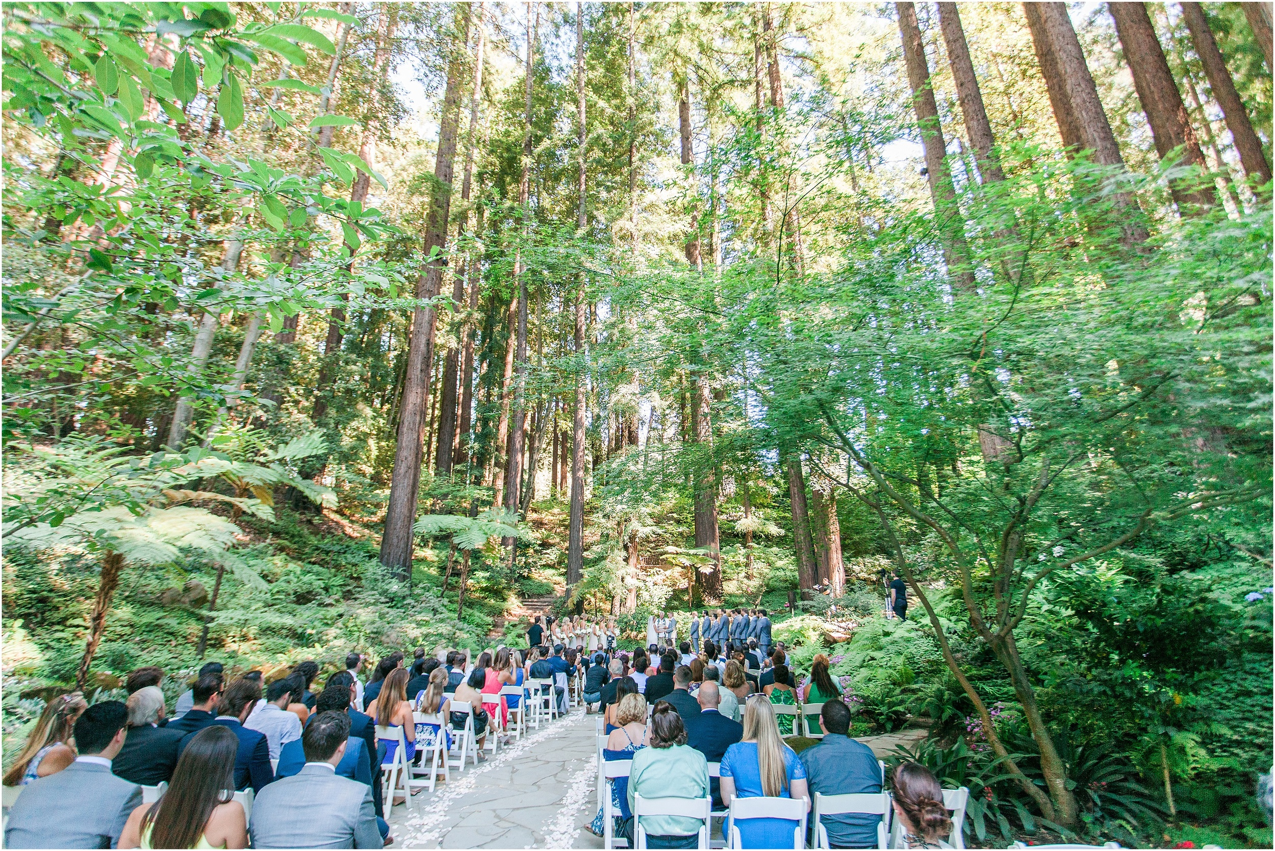Nestldown_Rustic_Summer_Redwoods_Wedding- 026.jpg
