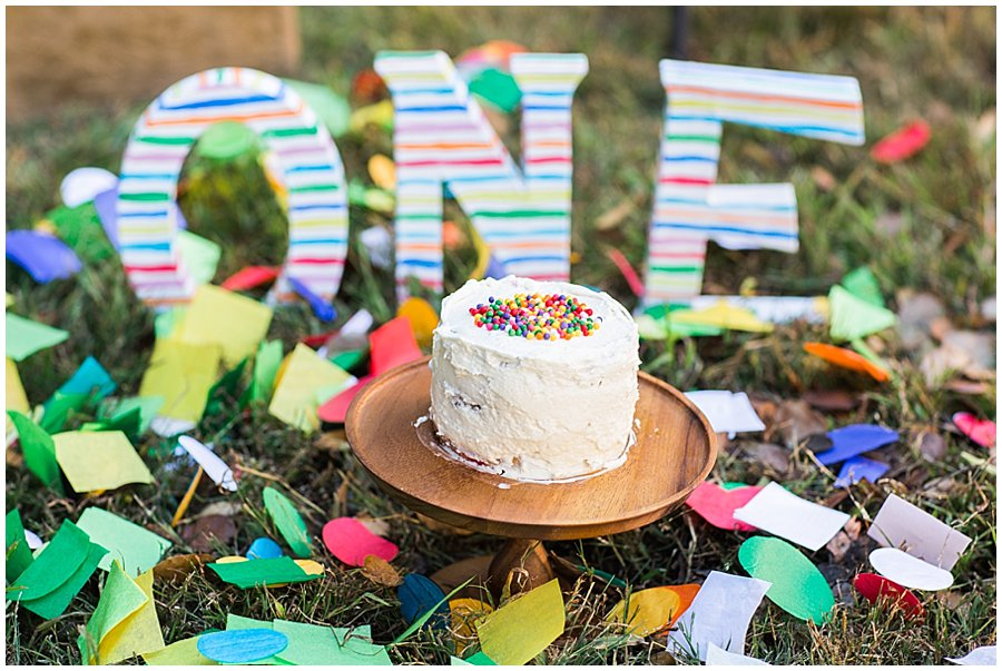 baby-one-year-birthday-cake_smash-13.jpg