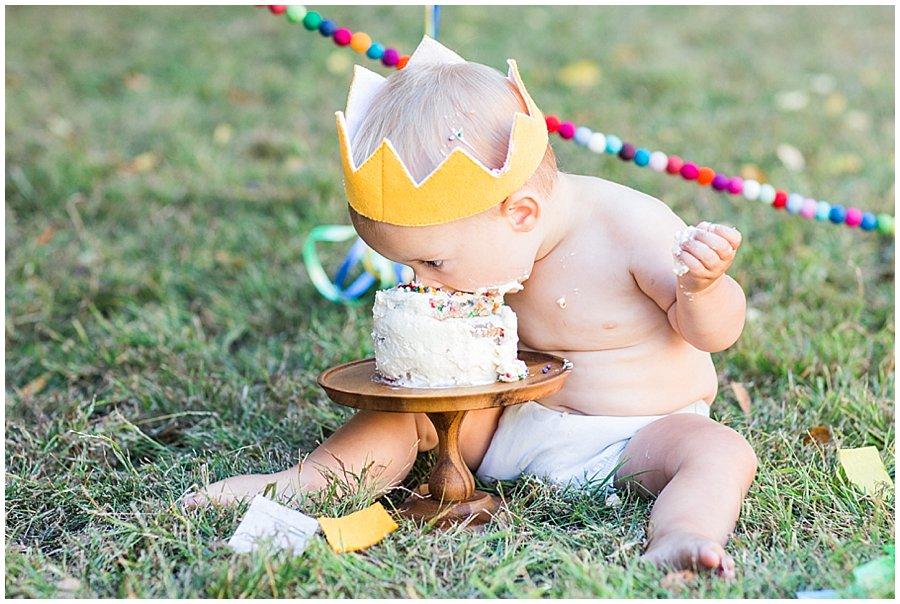 baby-one-year-birthday-cake_smash-16.jpg