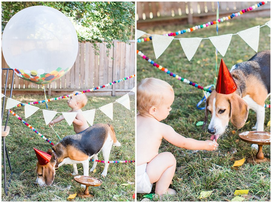 baby-one-year-birthday-cake_smash-20.jpg