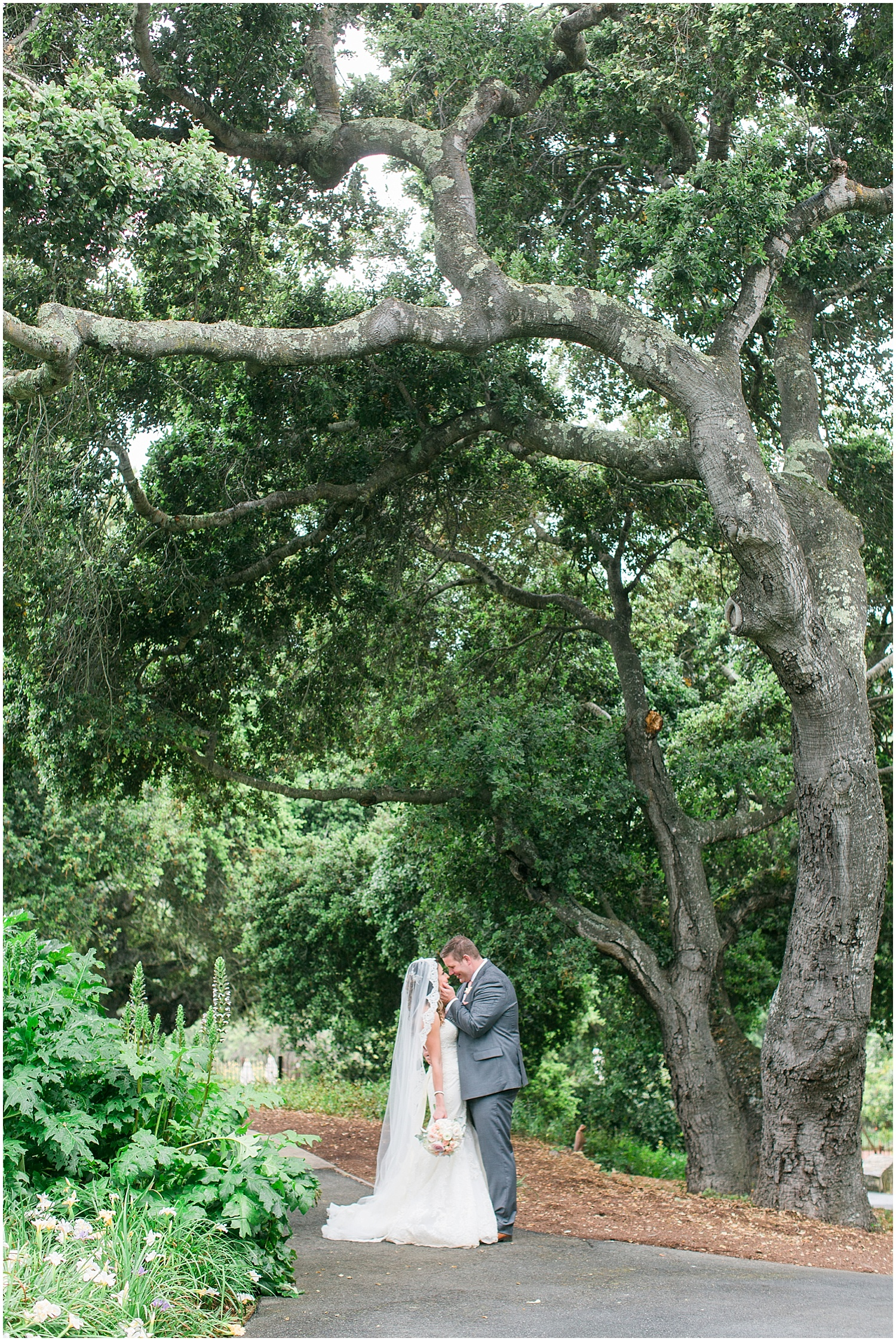 Carmel_holman_ranch_wedding_photographer-031.jpg