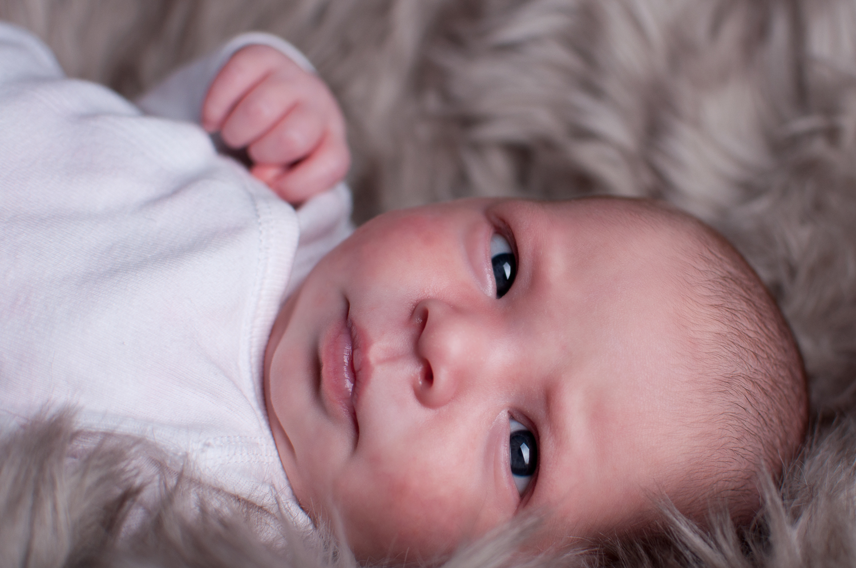 Pender Island Newborn Photographer - Amber Briglio Photography