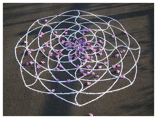 Star Lotus