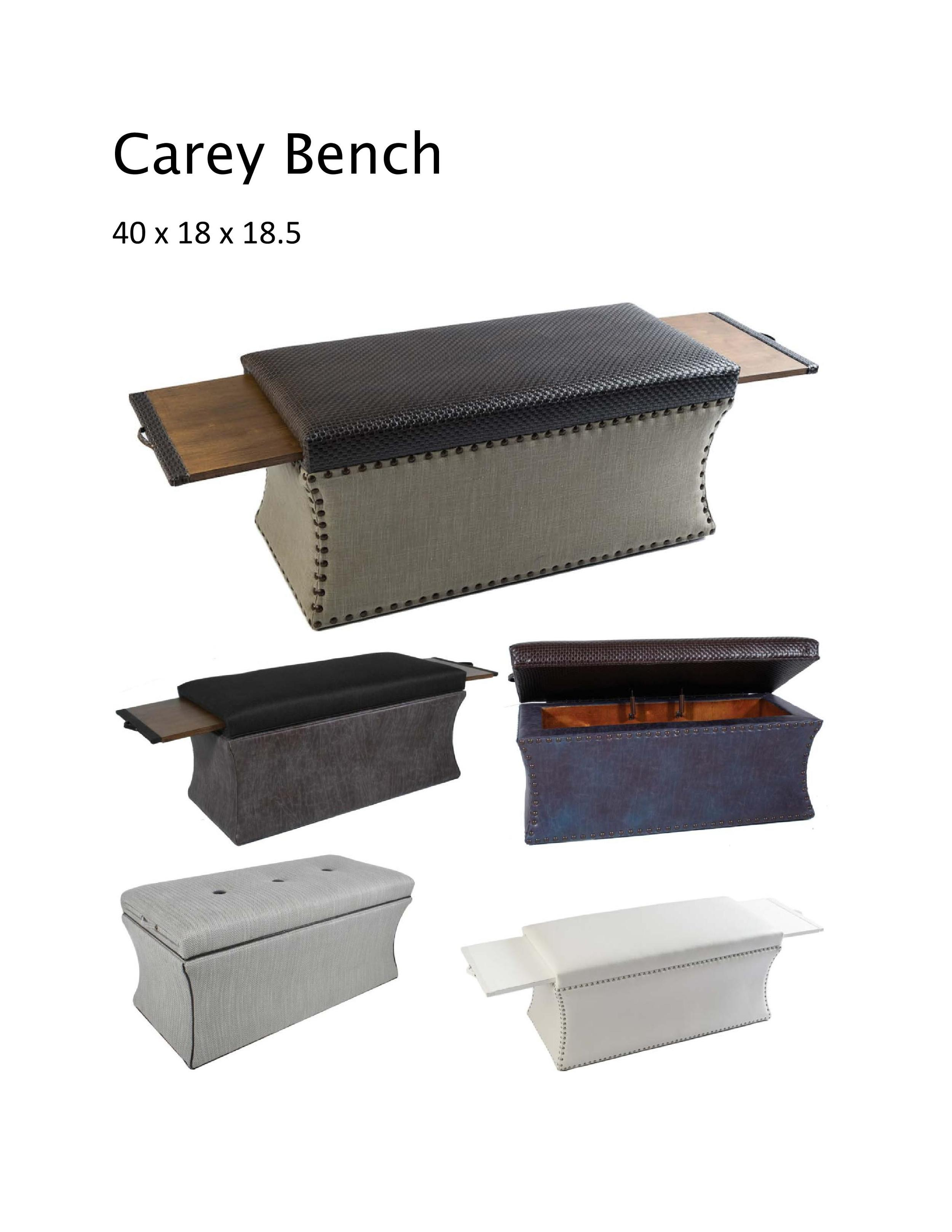 Carey Bench-page-001.jpg