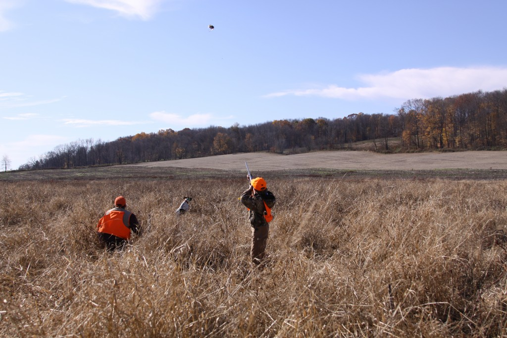2011-Wadsworth-Pheasant-Hunt-026-1024x682.jpg