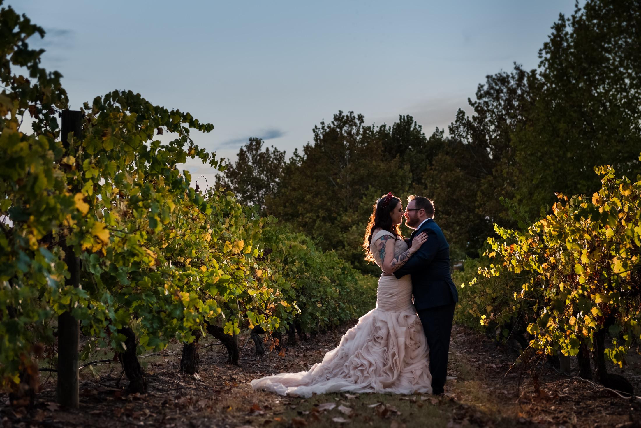 Wedding Portrait Sandalford Wines