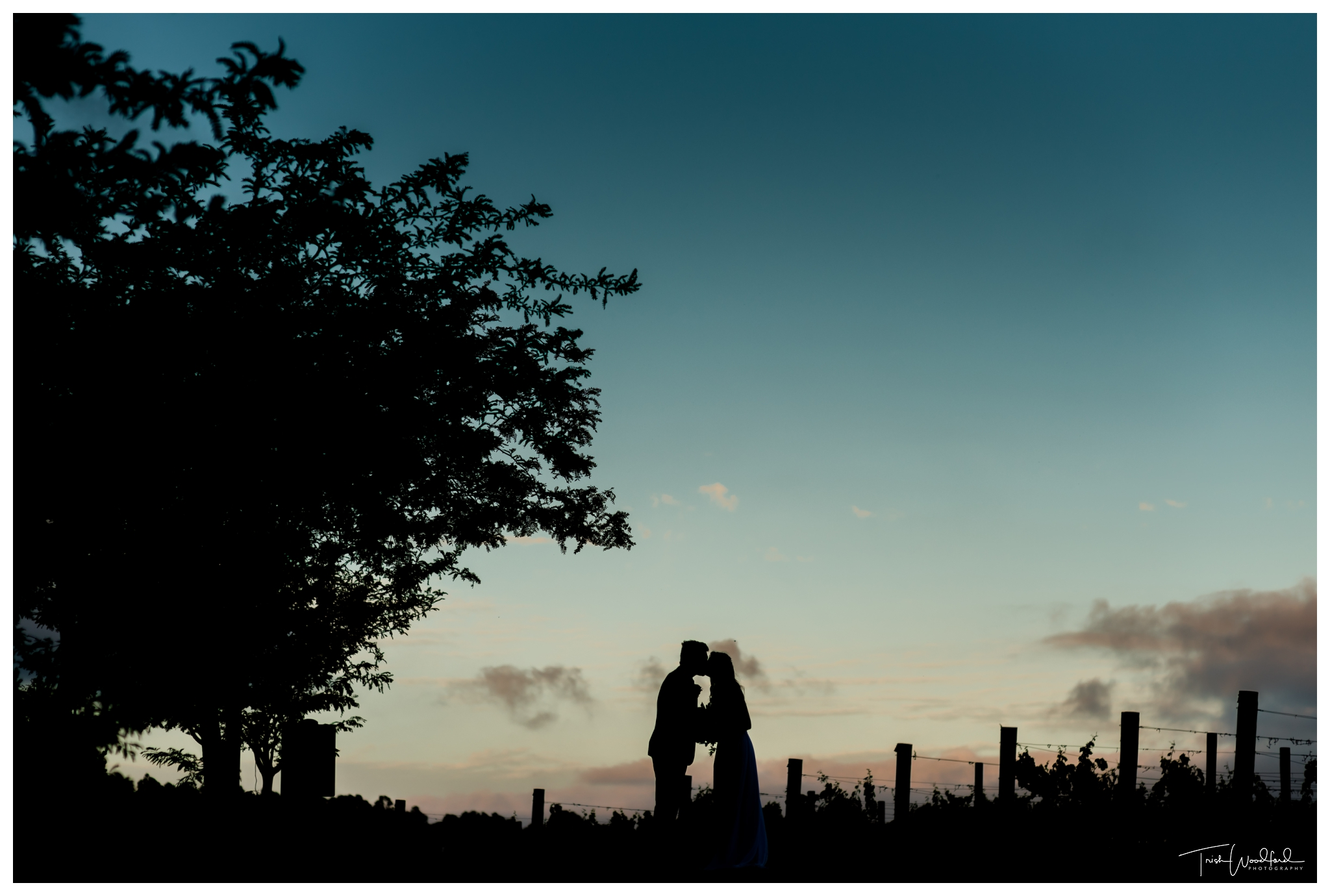 Wedding Vineyard Silhouette