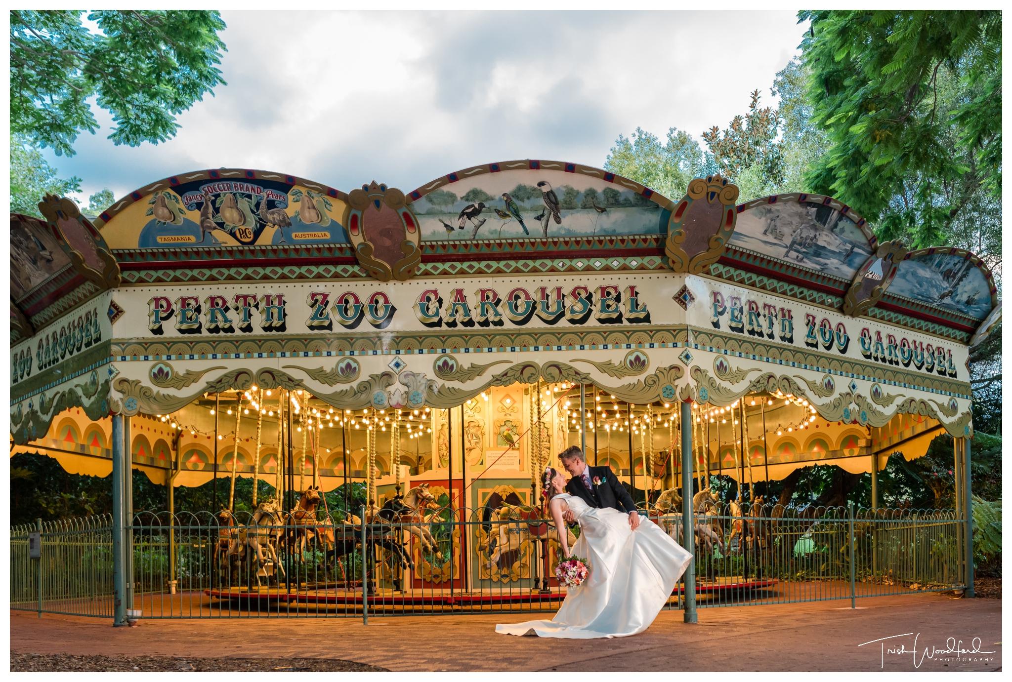 perth-zoo-wedding-carousel