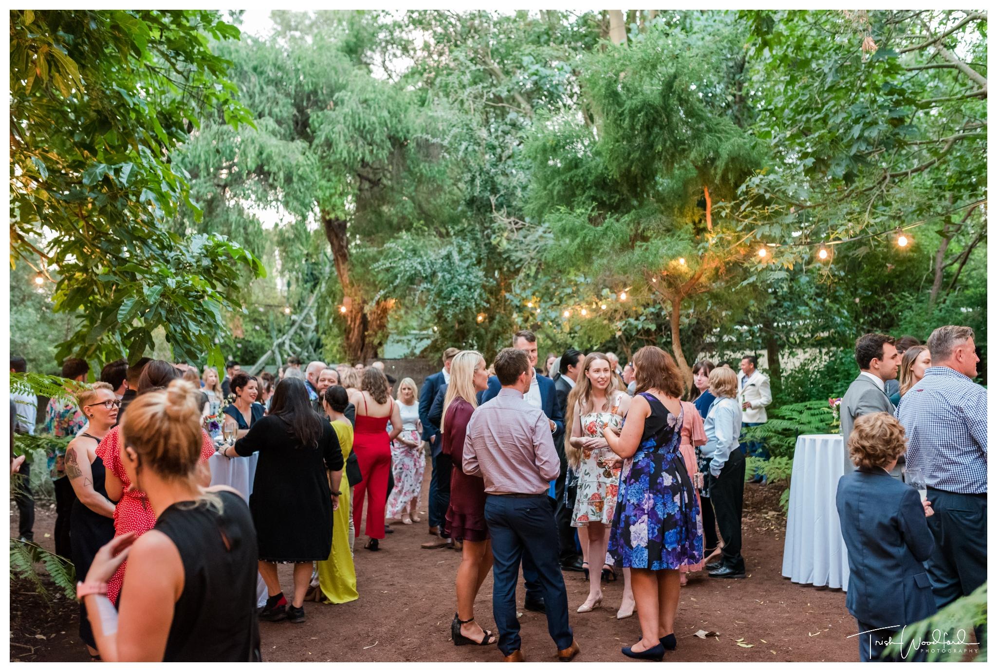 perth-zoo-wedding-reception