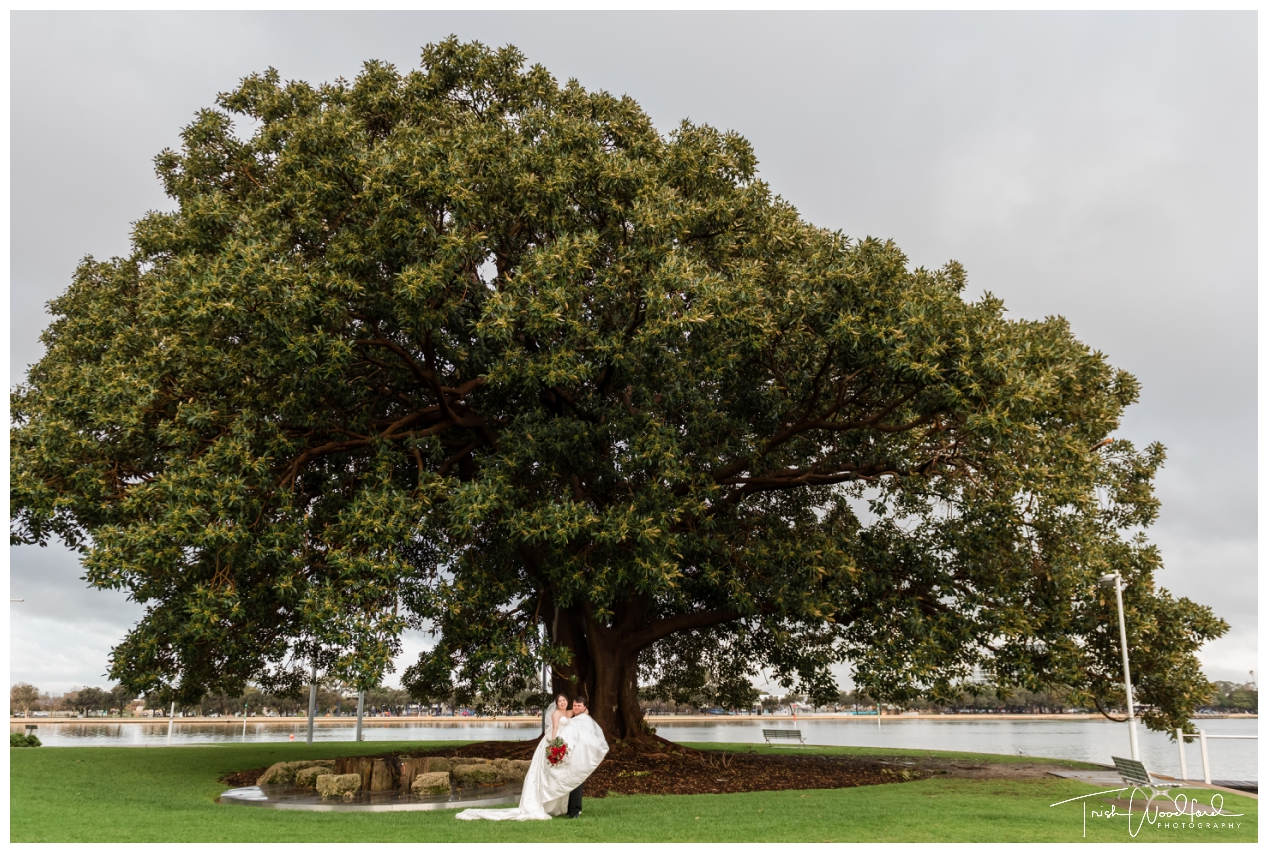 Old Fig Tree Mandurah Wedding